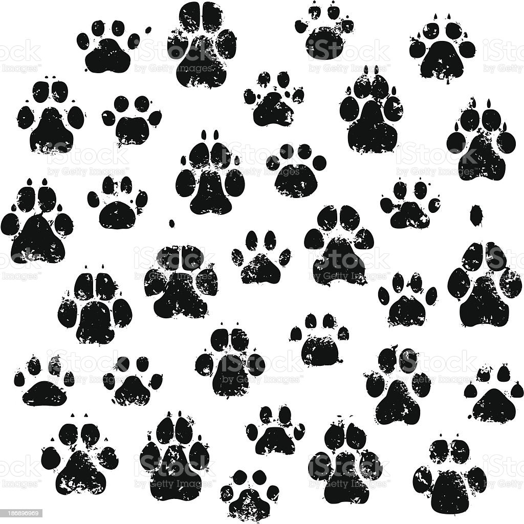 Cat And Dog Paw Prints vector art illustration