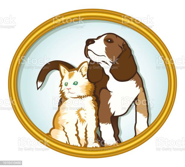 Cat and dog pets sitting together graphic vector illustration vector id1015410450?b=1&k=6&m=1015410450&s=612x612&h=gwjbiiiahvtq2imfukwm2whicajyz7xjwwbkjwg2gao=
