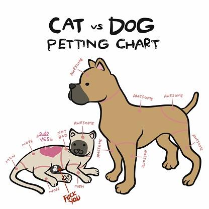 Cat and dog petting chart cartoon vector illustration