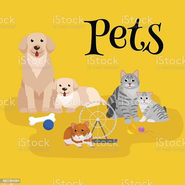 Cat and dog together lying vector id582284094?b=1&k=6&m=582284094&s=612x612&h=ig j868ascr2qwqbyj5dsyh2njq0fvw6yiuyrligkh4=