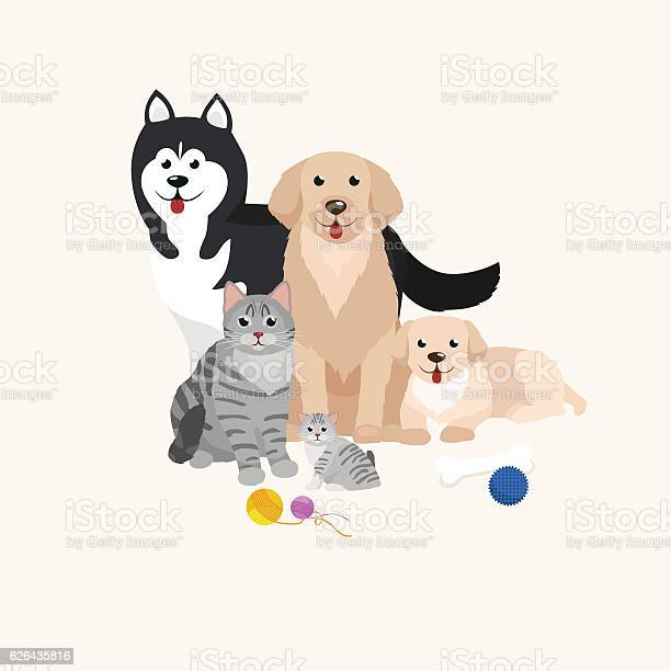 Cat and dog together lying vector id626435816?b=1&k=6&m=626435816&s=612x612&h=cyri hiwz8faxyflpfufner2ryoygqisvgdopmesq8m=