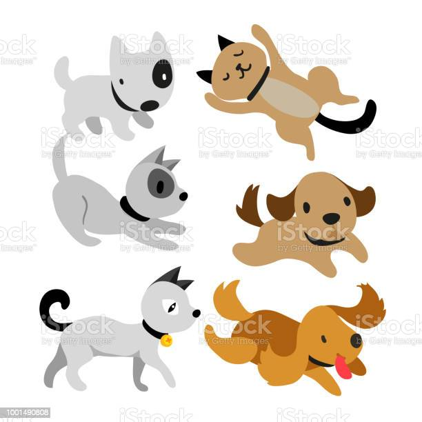 Cat and dog vector collection design vector id1001490808?b=1&k=6&m=1001490808&s=612x612&h=hsqvnon440goo1stchxyoqo2icknyozursdvjtgbzsq=
