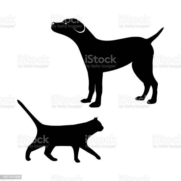 Cat and dog vector id1027012330?b=1&k=6&m=1027012330&s=612x612&h=du5eylgzadwrm9rjl uximmwzorpfyhacuit2z zoqu=