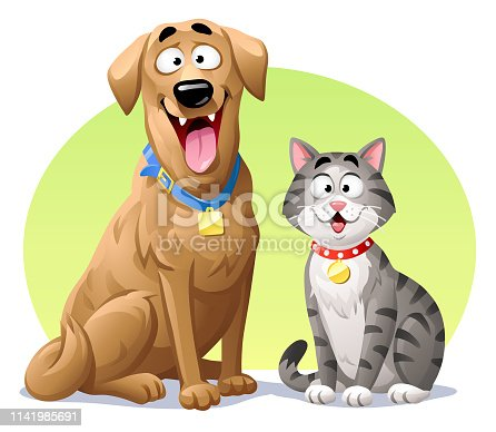 istock Cat And Dog 1141985691