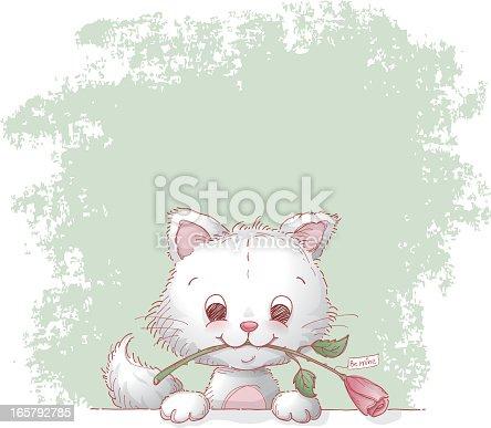 Cat and valentine rose