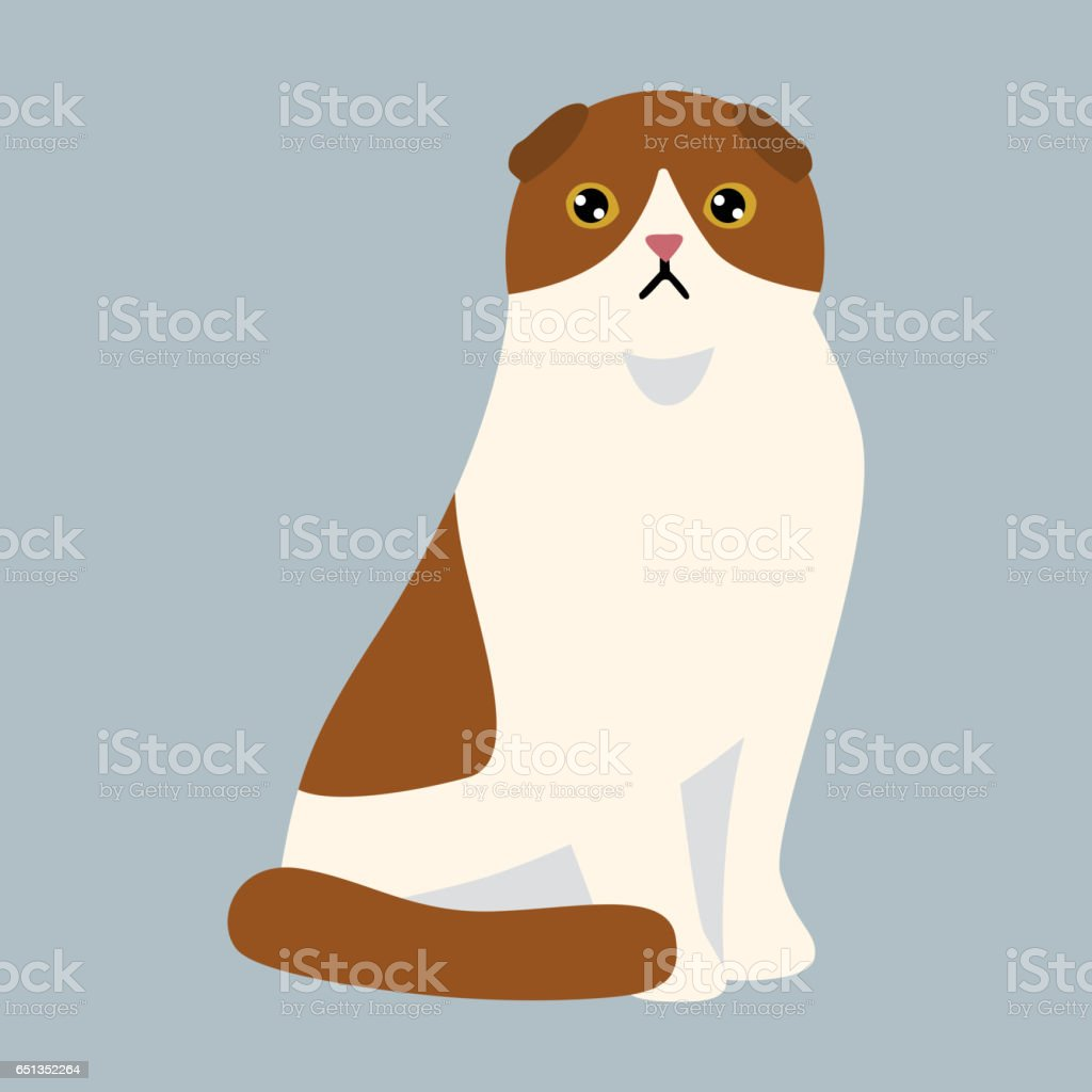 Ilustración de Gato De Raza Británico De Pelo Corto Lindo Del Animal ...