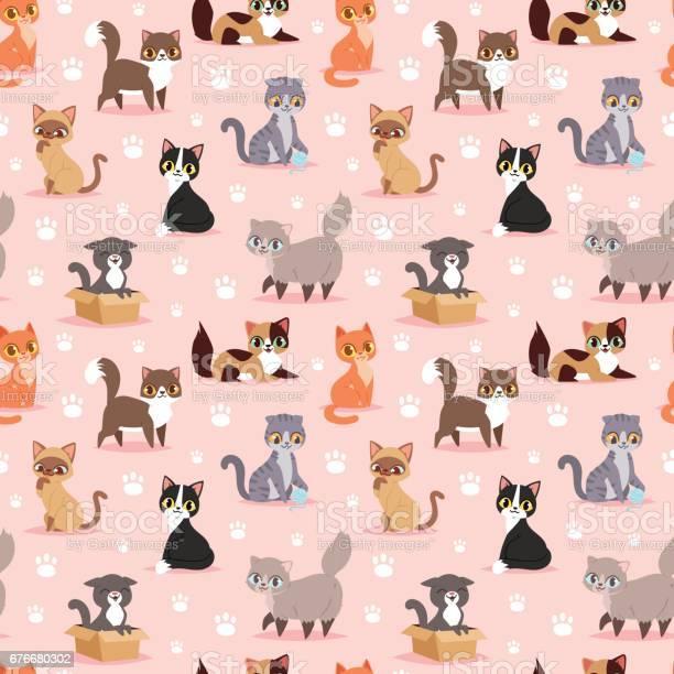 Cat breed cute kitten pet portrait fluffy young adorable cartoon vector id676680302?b=1&k=6&m=676680302&s=612x612&h=ggfeoth3g h8alqo0hdxw1agpiuivi1hpse3nz5jd8i=