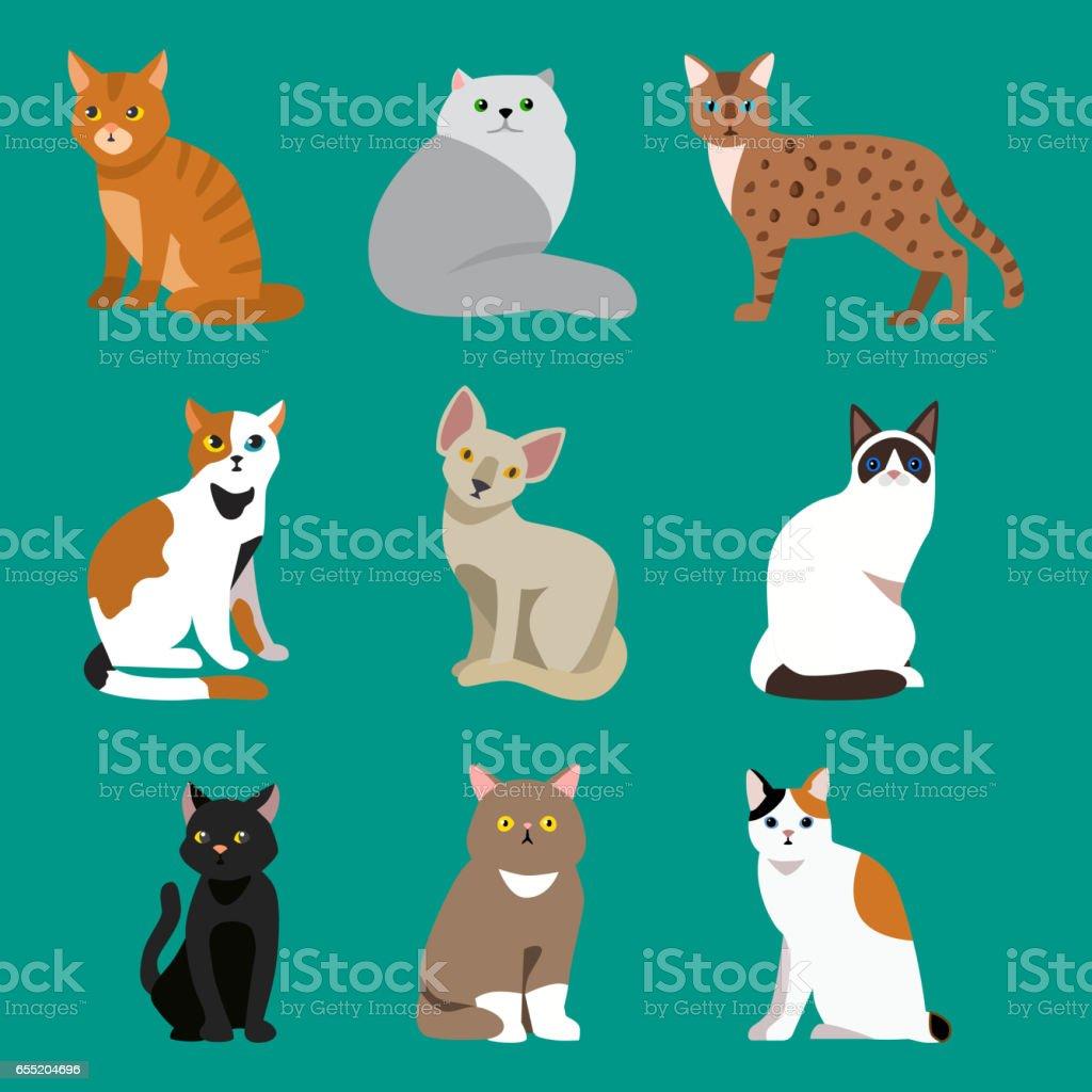 Ilustración de Gato Raza Lindo Retrato Del Animal Doméstico Mullido ...