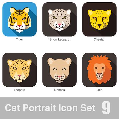 Cat breed face cartoon flat icon series