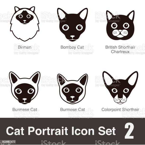 Cat breed face cartoon flat icon set series vector id503962472?b=1&k=6&m=503962472&s=612x612&h=8oeuotchzc4jdebixvqfc7uuv54ae7hf zofufoohis=