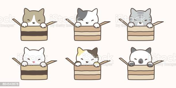 Cat breed in the box illustration doodle vector vector id854543878?b=1&k=6&m=854543878&s=612x612&h=qv3j220nooicysj1lgju7gpesphdrcfeym1vhinsris=
