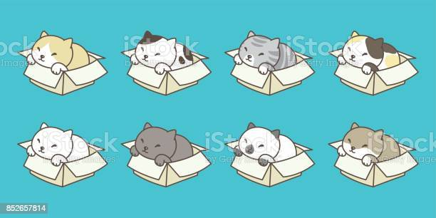 Cat breed in the box kitten vector illustration vector id852657814?b=1&k=6&m=852657814&s=612x612&h=cl2vpurd1bkyjm6lxbmzpq6e7gepebvscwwxfmgkr9s=