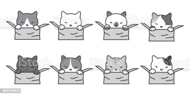 Cat breed in the box vector cartoon illustration doodle vector id858289826?b=1&k=6&m=858289826&s=612x612&h=nxqpqc87k1 ygjlcmrw37i9aiiuaskwj0tufug4l56q=