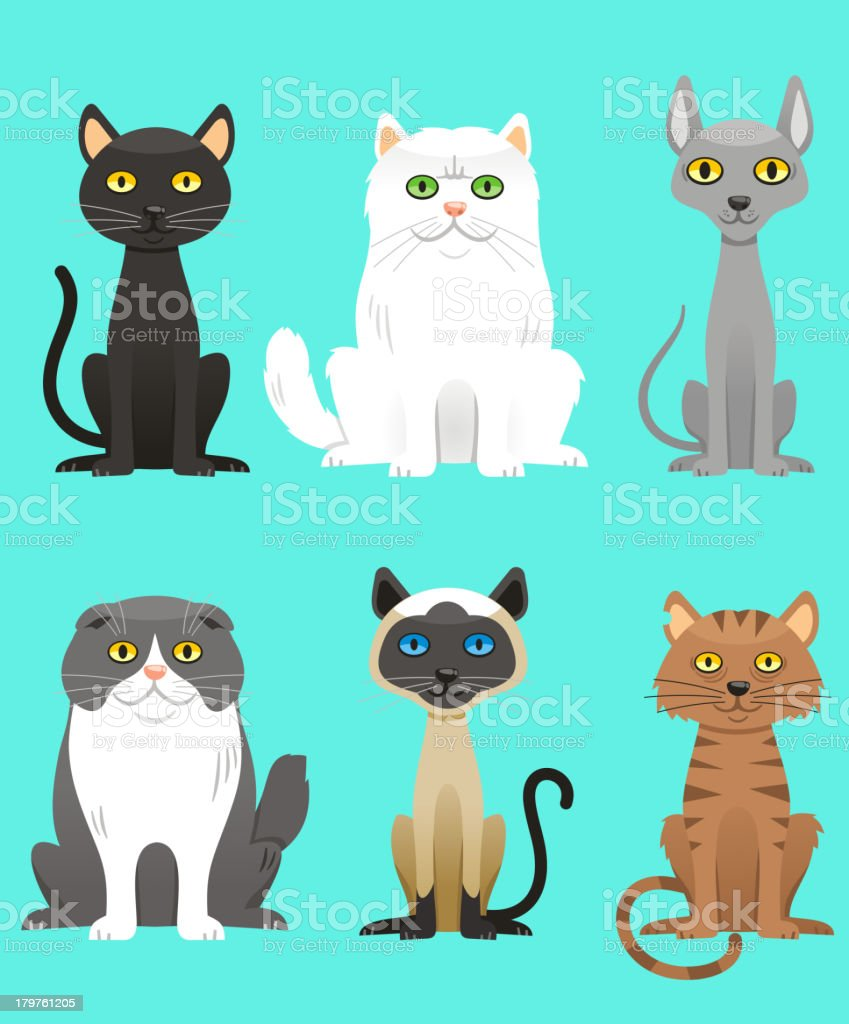 Cat Breed Set vector art illustration