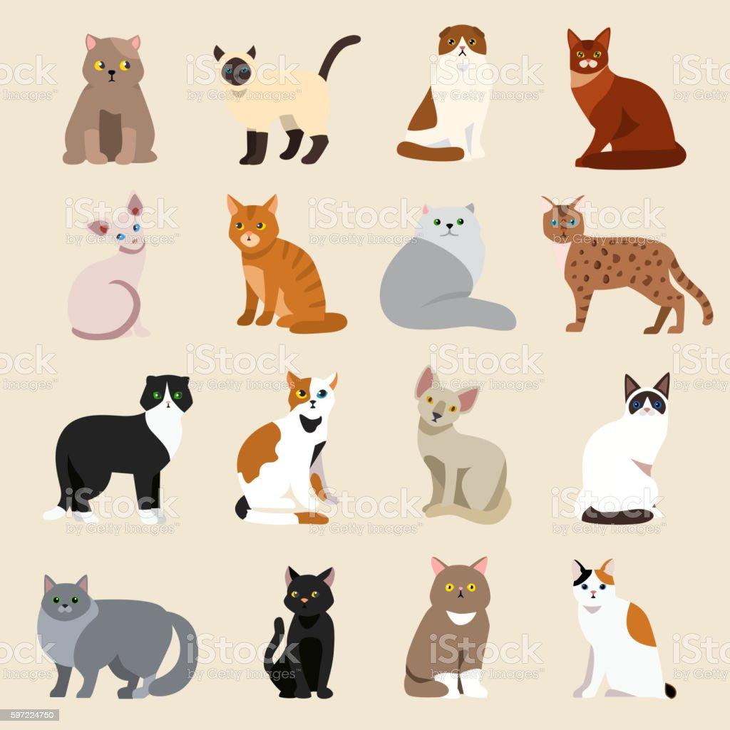 Cat breeds cute pet animal set vector art illustration