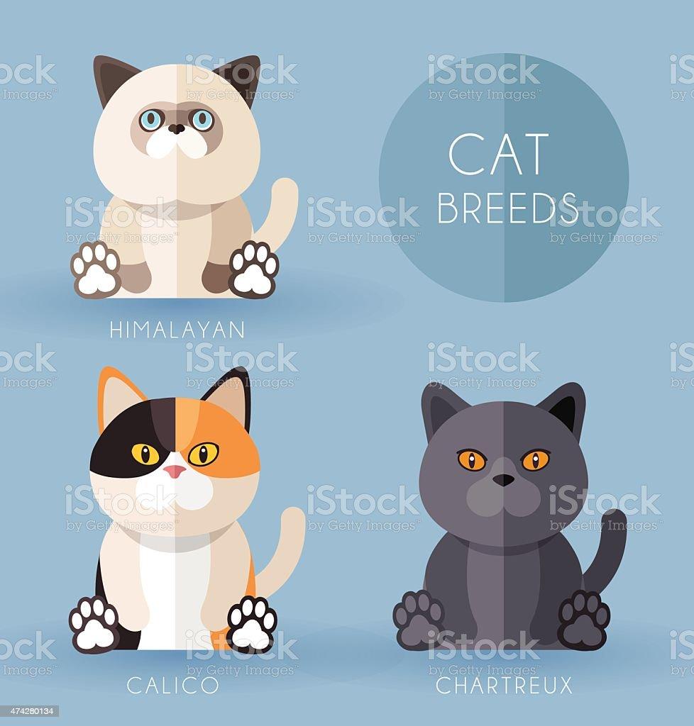 Cat Breeds vector art illustration