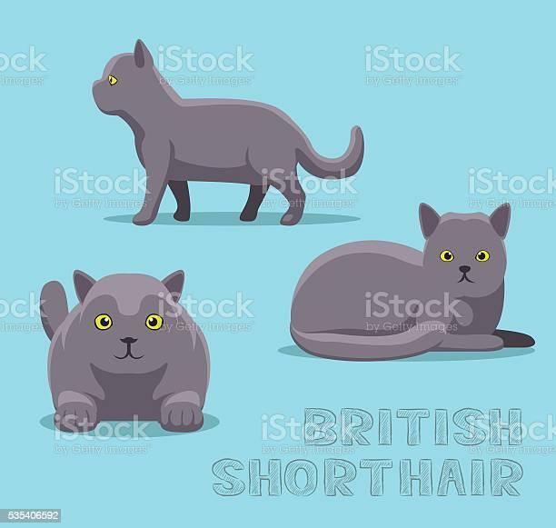 Cat british shorthair cartoon vector illustration vector id535406592?b=1&k=6&m=535406592&s=612x612&h=n8wqxoxp2zw2d pthiofy5n4cw8lb9lot1lwm5b4nc0=