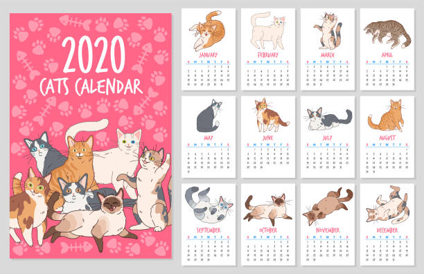 cat calendar. 2020 year planner with cute cats, funny kitten hand drawn design vector set - animals calendar stock illustrations
