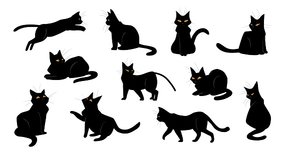 Cat. Cartoon black kitten sitting and walking, standing or jumping. Poses of playful kitty. Shorthaired pet breed with yellow eyes. Collection of domestic animal silhouettes, vector set