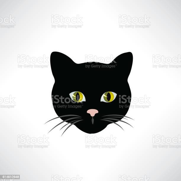 Cat cats face isolated pet head animal design element vector id614612648?b=1&k=6&m=614612648&s=612x612&h=1ld9n9asgysd6neu7torpray6ywn3f7ypjbyg1uyvmc=