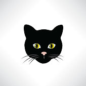 Cat. Cats face isolated. Pet head. Animal design element