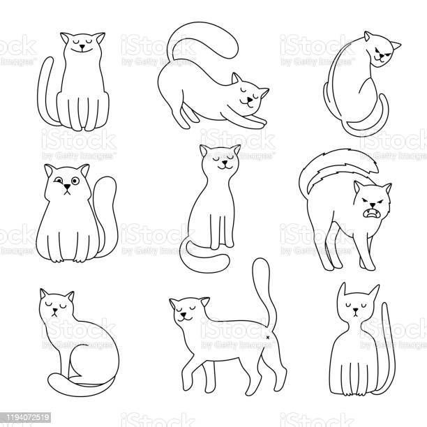 Cat character sketch vector id1194072519?b=1&k=6&m=1194072519&s=612x612&h=77lpkukwk8iapvhpjmorwjetgyz8zjmpmyhrvpvaukm=