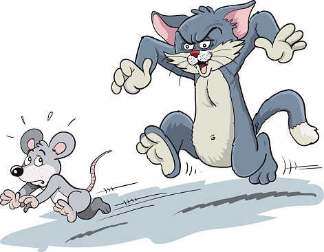 Cat chasing a mouse.