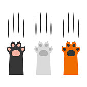 Cat Claw Scratching Set on White Background. Vector