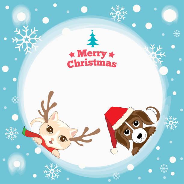 katze hund weihnachten - swag stock-grafiken, -clipart, -cartoons und -symbole
