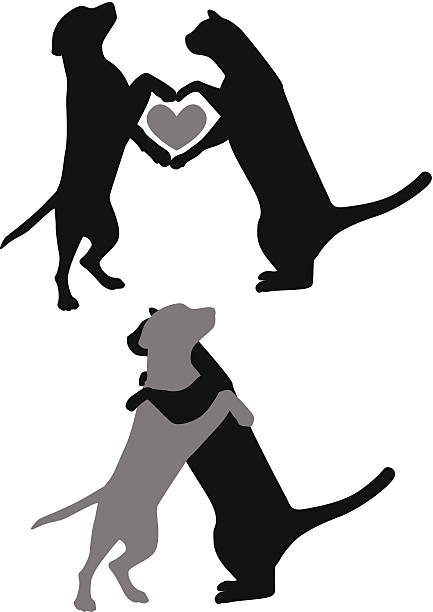 Cat Dog Love vector art illustration
