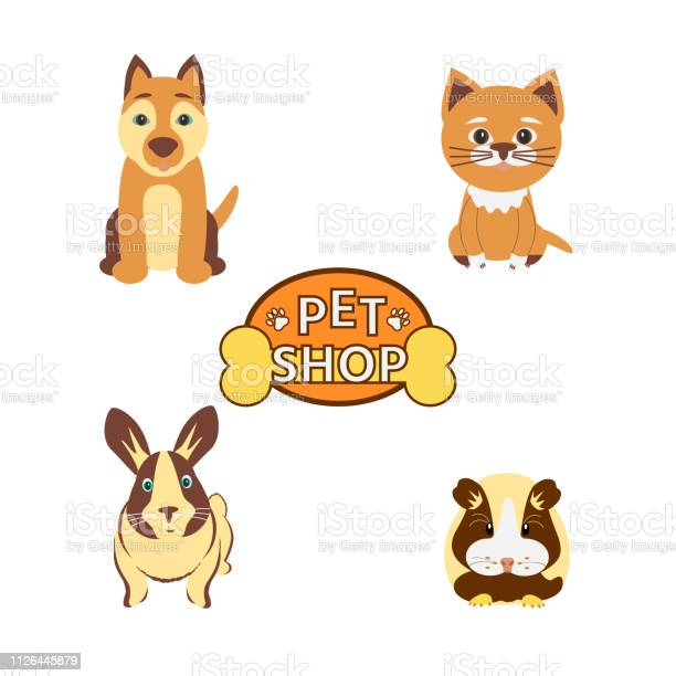 Cat dog rabbit guinea pig and icon whith text pet shop on white vector id1126445879?b=1&k=6&m=1126445879&s=612x612&h=lectm443kovodktk8gcrc49jiq22wii5yow1t7guy i=