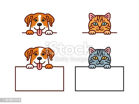 istock Cat & dog 1167801318