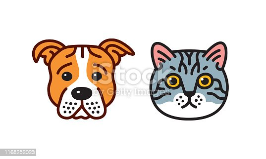 istock Cat & dog 1168252023