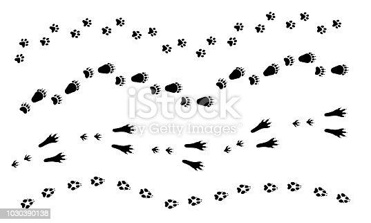 Cat Dog Wolf Rabbit Bear Foot Print Paw Set Animal Tracks