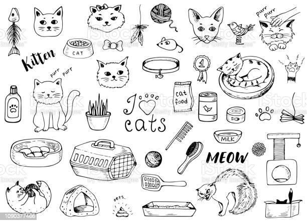 Cat doodles on a white background vector id1090377466?b=1&k=6&m=1090377466&s=612x612&h=cew5ozxfliwzoiplnddnvaxvb6ljh0zztlml2956i4m=