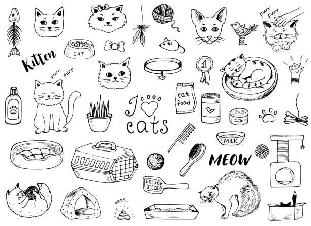 白い背景の上に猫がいたずら書き - ペットショップ点のイラスト素材/クリップアート素材/マンガ素材/アイコン素材