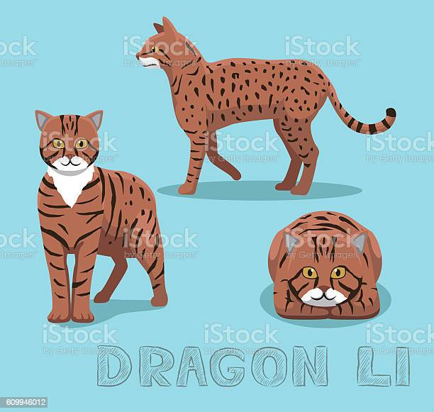 Cat dragon li cartoon vector illustration vector id609946012?b=1&k=6&m=609946012&s=612x612&h=frkygwn z4gwt89qnyeypkjqzw8qu ojdxjue8xfnwe=