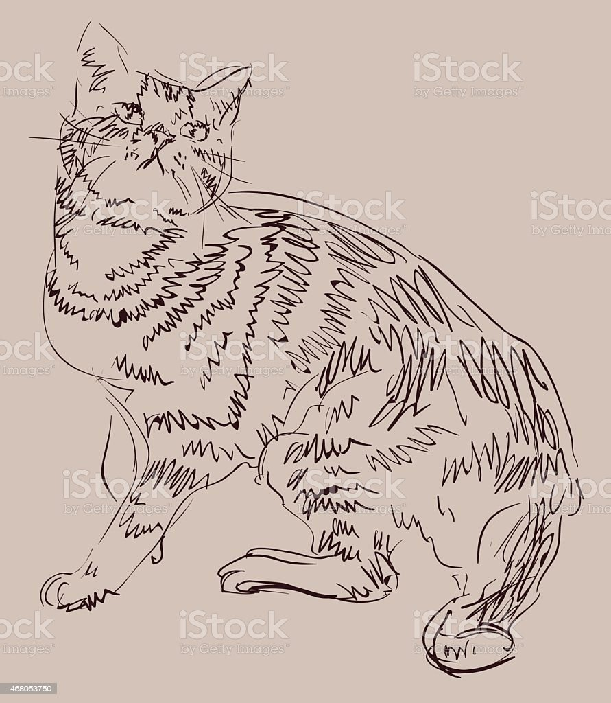 Cat drawing, simple vector sketch. vector art illustration