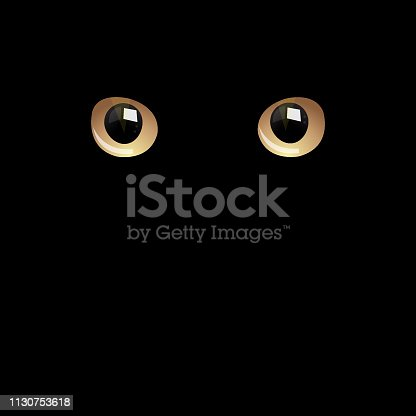 Vector of Cat eyes in darkness. EPS Ai 10 file format.
