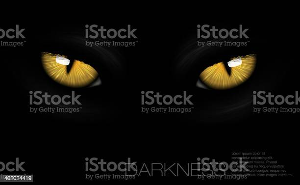 Cat eyes in darkness vector id462024419?b=1&k=6&m=462024419&s=612x612&h=pfqvledby7j22b0je8ptwljpqzuu84xsfrbxorvrrq0=