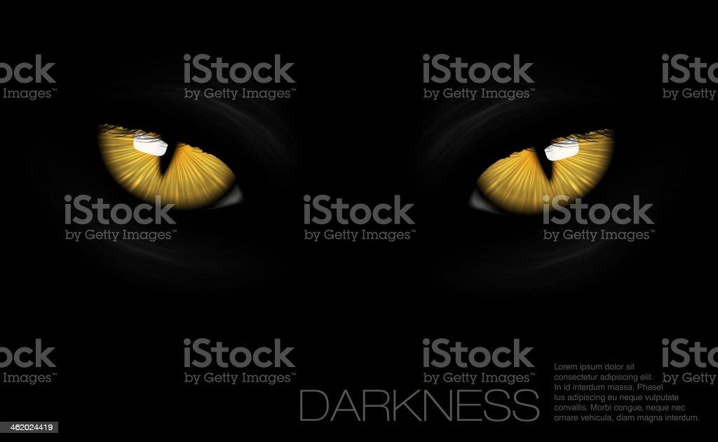cat eyes in darkness vector art illustration