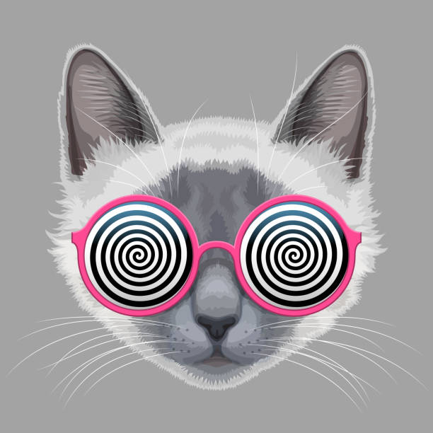 Cat face and hypnotic eyeglasses Cat face and glamorous eyeglasses with hypnotic spiral patterns instead of glasses psychedelic stock illustrations