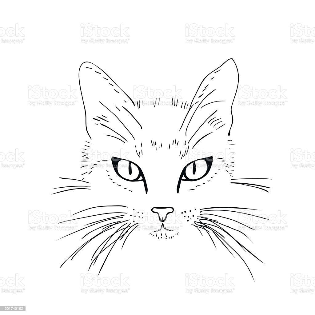 ilustração de rosto de gato desenho em preto e branco e mais banco