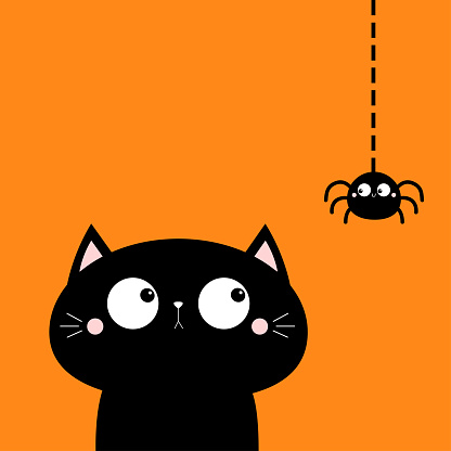 Cat face head looking at hanging spider insect. Cute cartoon character icon. Kawaii baby animal. Happy Halloween. Notebook cover, tshirt, greeting card, sticker print. Flat design. Orange background.