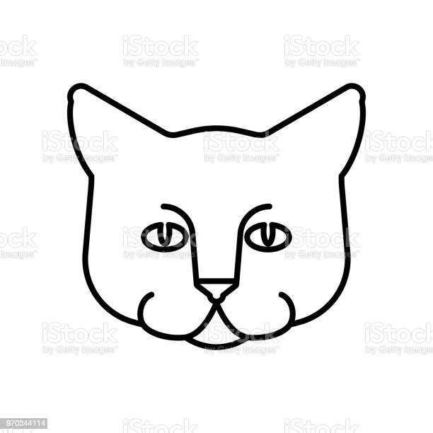 Cat face linear style home pet vector illustration vector id970344114?b=1&k=6&m=970344114&s=612x612&h=tzdoy4x0h4ix fivqfvv 6b nvty8dzfvqgvfaed0nq=