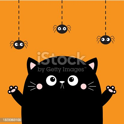Cat face looking at hanging spider. Happy Halloween. Boo. Cute cartoon character. Kawaii baby animal. Notebook cover, tshirt, greeting card, sticker print. Flat design. Orange background.