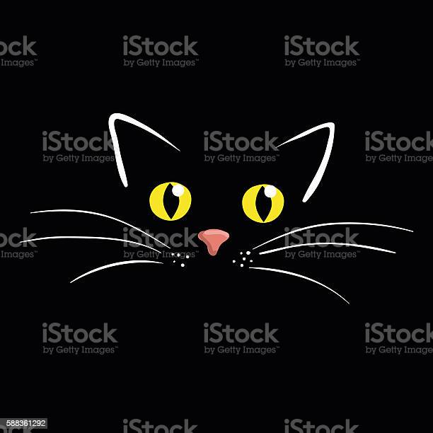 Cat face on black background vector illustration vector id588361292?b=1&k=6&m=588361292&s=612x612&h=haeq k4pwiuvdok5vlearsy9wczw9weor9v ueo2ag0=