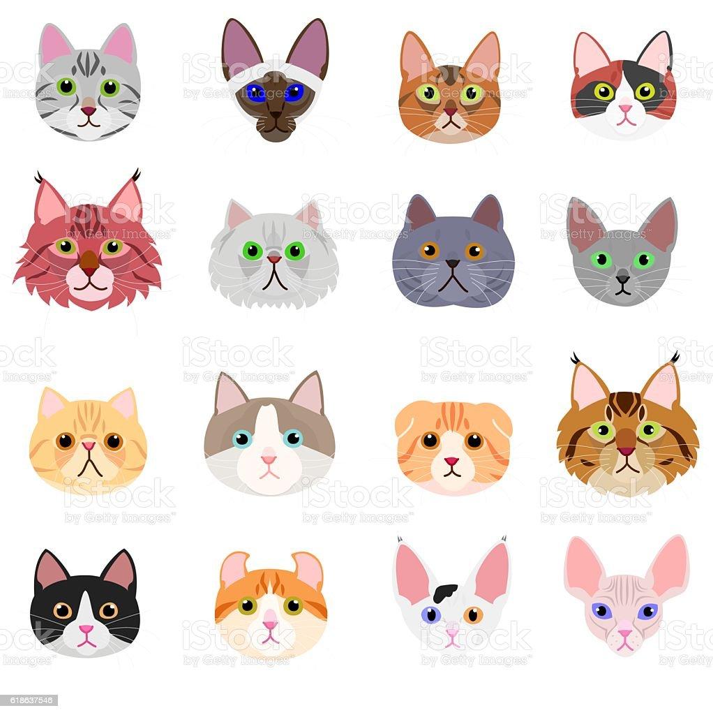 royalty free cat show clip art vector images illustrations istock rh istockphoto com black cat face clipart cat face clipart black and white