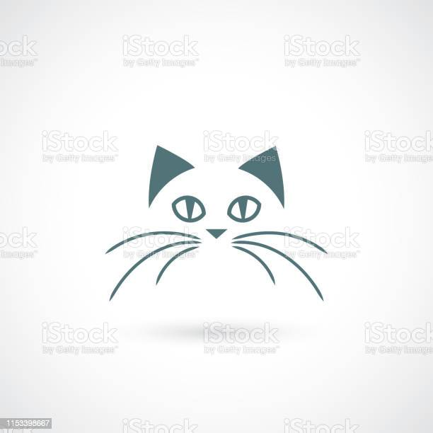 Cat face vector illustration vector id1153398667?b=1&k=6&m=1153398667&s=612x612&h= nkpi7gdp1bodledz7zwwnovipsxgvd95xcxan x2jw=