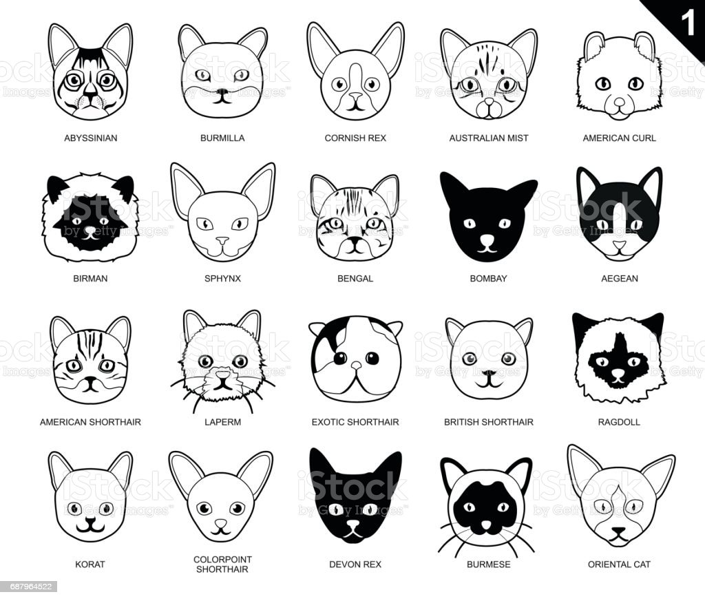 Cat Faces Icon Cartoon Black And White Stock Vector Art & More ...
